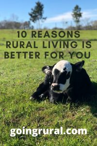 10 Reasons Rural Living Is Better For You