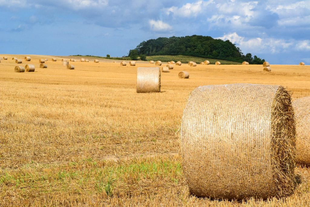 Hay Bales- Good Things About Rural Areas