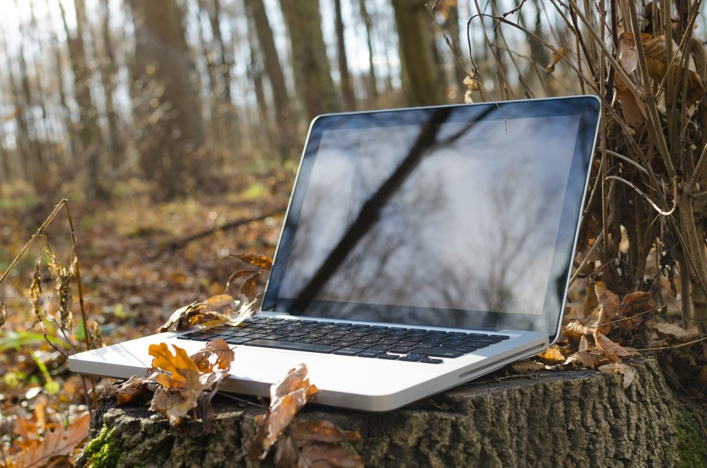 Rural Internet Laptop in the woods