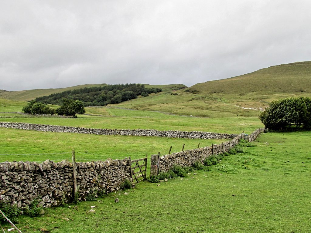 Live In A Rural Area-Drystone wall