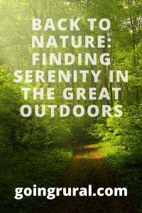 Back to Nature: Finding Serenity in the Great Outdoors