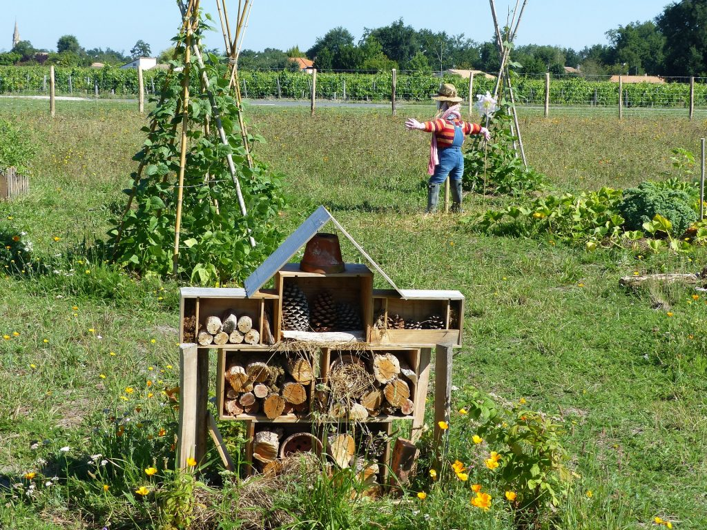 Permaculture A Combination Of Multiple Techniques