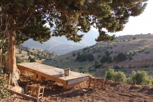 A Table And Chairs Is An Ideal First Piece Of Outdoor Furniture