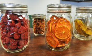 Develop Skill Such As Canning- Rural Life In An Urban Environment