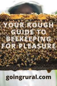 Your Rough Guide to Beekeeping For Pleasure