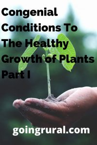 Congenial Conditions To The Healthy Growth of Plants Part I
