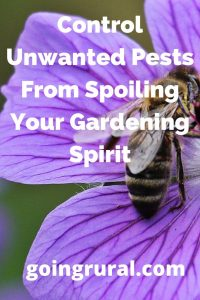 Control Unwanted Pests From Spoiling Your Gardening Spirit