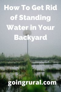 How To Get Rid of Standing Water in Your Backyard