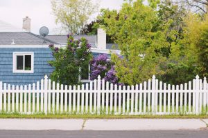 When You Install A Wood Fence You Have Many Options To Customise It
