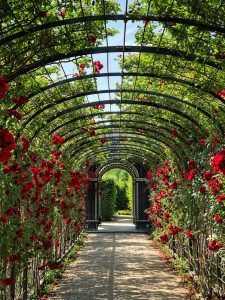 A Beautiful Garden Be Designed  To Take You On A Journey