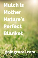 Mulch is Mother Nature's Perfect Blanket